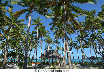 Landscape of a resort on tropical beach in Fiji