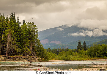 Landscape of a river, mountain and forest, with an eagle in the sky, during a cloudy summer day.