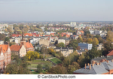landscape of a small town from a height in autumn