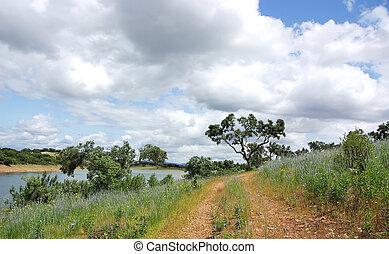Landscape of alentejo region, Portugal