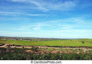 landscape of alentejo region, south of Portugal