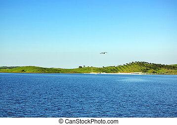 Landscape of alqueva lake , alentejo region, Portugal.