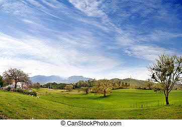 Landscape of an italian village