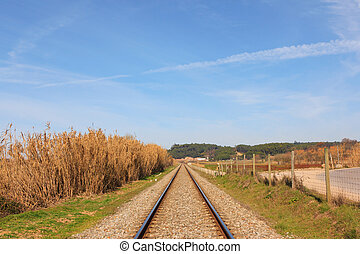 Landscape of an portuguese railway against forest and blue sky