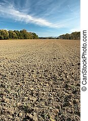 Landscape of arable cultivation - Autumn cultivated arable...