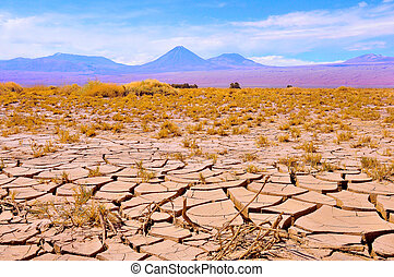 Landscape of Atacama desert.