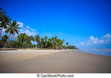 Landscape of beautiful tropical beach at Kelantan, Malaysia
