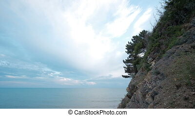 Landscape of blue sky with cirrus clouds near shore with greens.