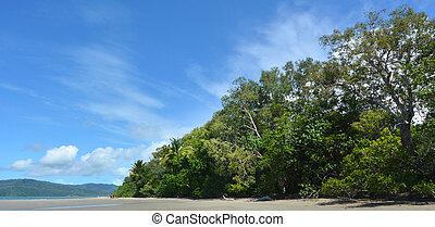 Landscape of Cape Tribulation in Daintree National Park ...