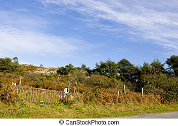 landscape of country in brittany