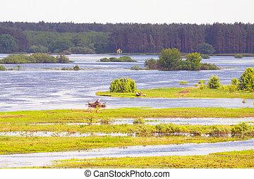 Landscape of flooded meadow