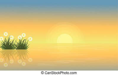 Landscape of flower on the lake
