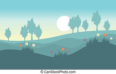 Landscape of flower spring on the hill