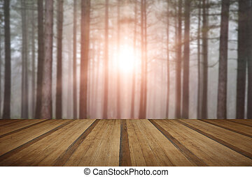 Landscape of forest with dense fog in Autumn Fall with sun bursting through trees with wooden planks floor