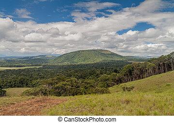 Landscape of Gran Sabana region in National Park Canaima, ...