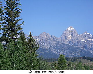 Landscape of Grand Teton