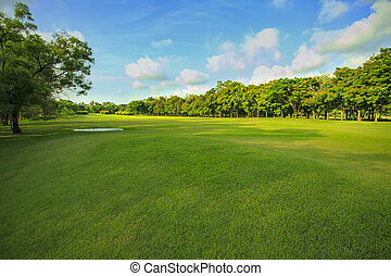 landscape of grass field and green environment public park use as natural background, backdrop