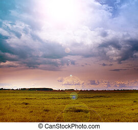 Landscape of green field and sun in the sky