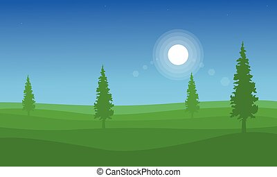 Landscape of hill with spruce