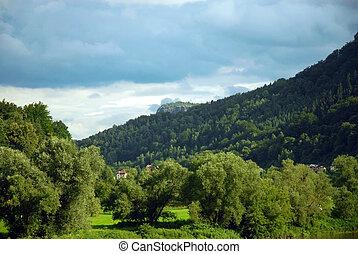 Green mountain forest. Czech Republic