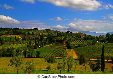 Landscape of Italian Tuscan villas and vineyards