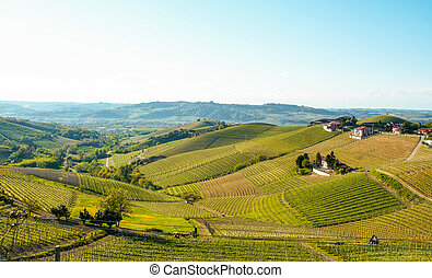 Landscape of Langhe
