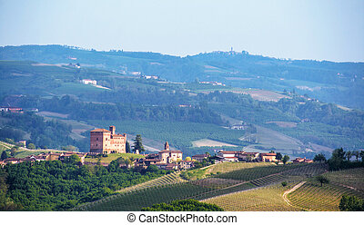 Landscape of Langhe with castle of Grinzane Cavour