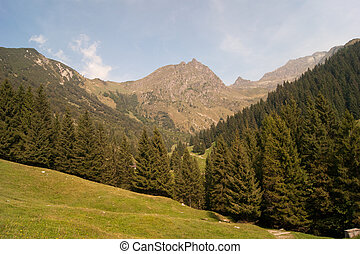 Landscape of mountain alps