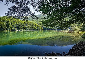 Landscape of mountain lake Biogradsko jezero