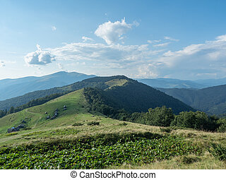 Landscape of mountain pasture. Carpathians mountains, west...