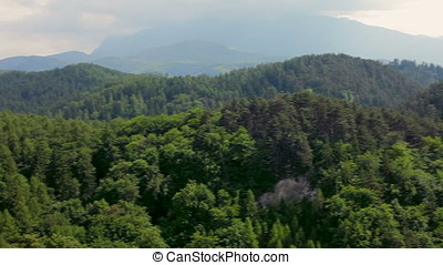 Landscape of mountains in summer with green trees