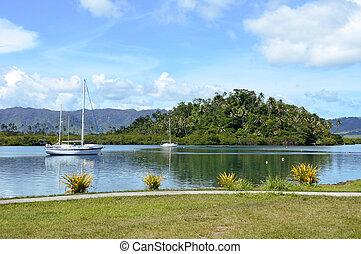 Landscape of Nakama Creek in Savusavu in Vanua Levu Island, Fiji.