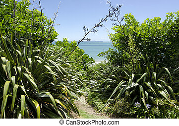 Landscape of Northland New Zealand. - Entrance to the wild...
