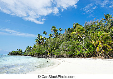 Landscape of Rapota Island in Aitutaki Lagoon Cook Islands