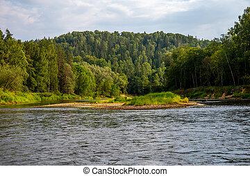 Landscape of river and green forest. - Landscape of flowing...