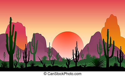 Landscape of rocky desert with cacti - Sunset in a stony ...