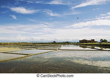 landscape of saltern