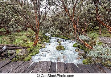 Landscape of Santa Cruz Trek