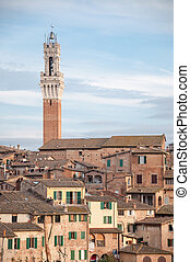 landscape of siena with tower of Mangia