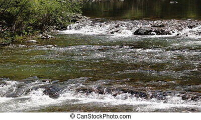 Landscape of small mountain river waterfall flowing in forest, close up