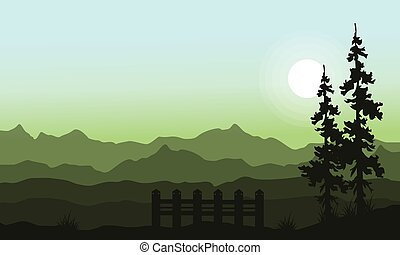 Landscape of spruce with mountain background