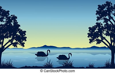 Landscape of swan on lake silhouettes