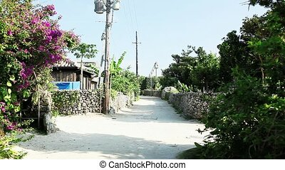 landscape of Taketomi island