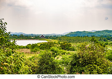 landscape of thailand. Green nature. Green landscape with a lake, a house and palm trees