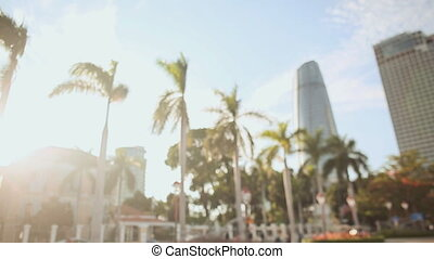 Landscape of the city of Da Nang with palm trees at sunset. Blurred image.