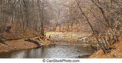 Landscape of the river in the autumn forest in brown tones