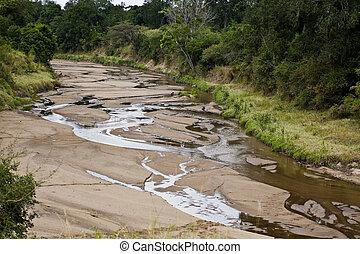landscape of the savannah in Kenya