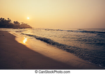 Landscape of tropical island beach with palm trees in the sunrise