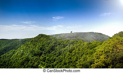 landscape of tropical jungle forest growing on the mountain top on tropical exotic island