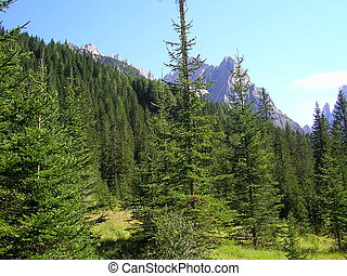 Landscape of Val Pusteria, Dolomiti, Italy